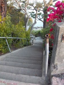 One of the many almost hidden stairways in Sausalito